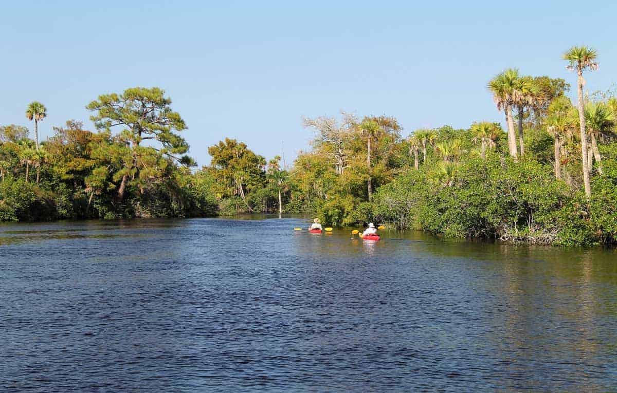 People in Kayaks on the Loxahatchee River Florida.