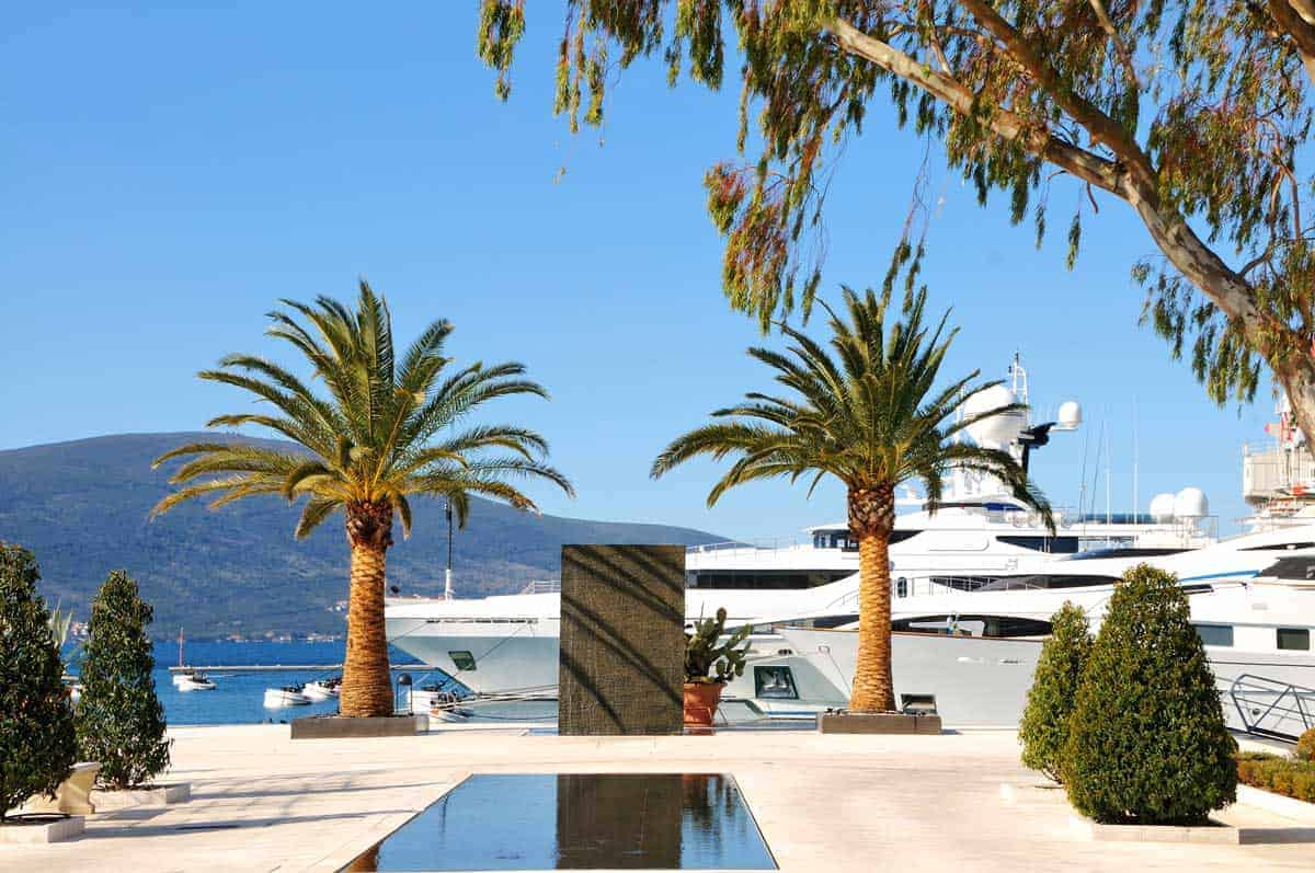 Luxury yachts moored up in a marina with palm trees in Montenegro.