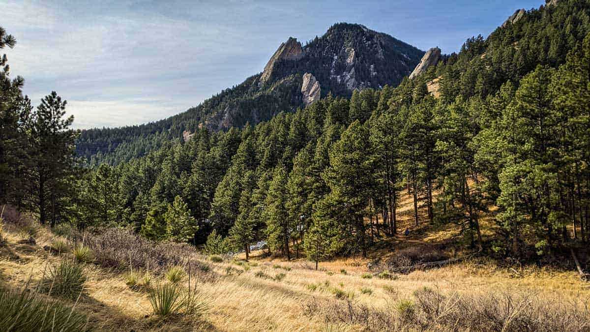 Meadows with fir trees and mountains on the Bear Peak Hiking Trail Boulder Colorado.