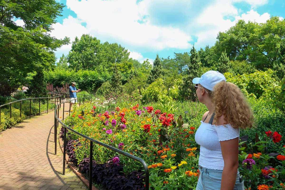 Young woman watching a man photograph flowers in Chicago Botanic Gardens.
