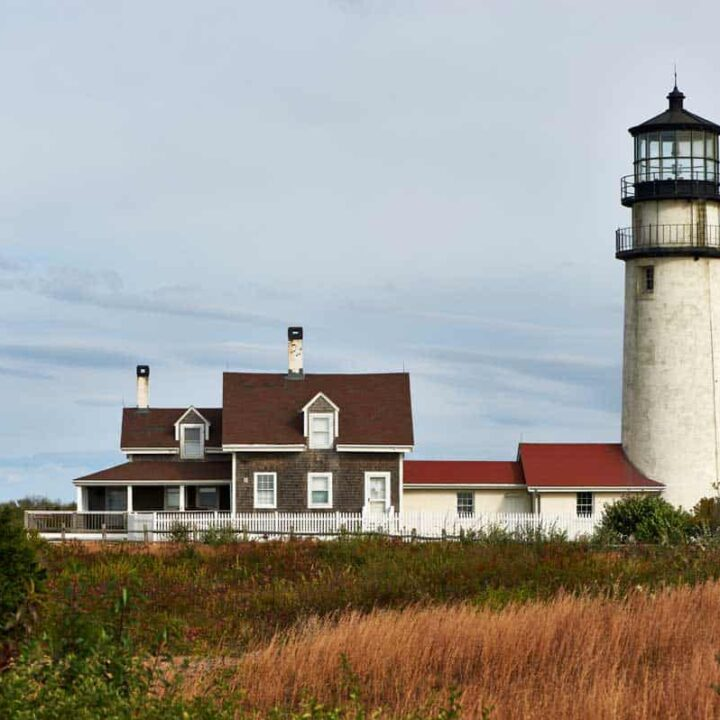 Highland Lighthouse with high grass in the foreground at Cape Cod