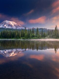 Mt Rainier at sunset reflecting in the lake.