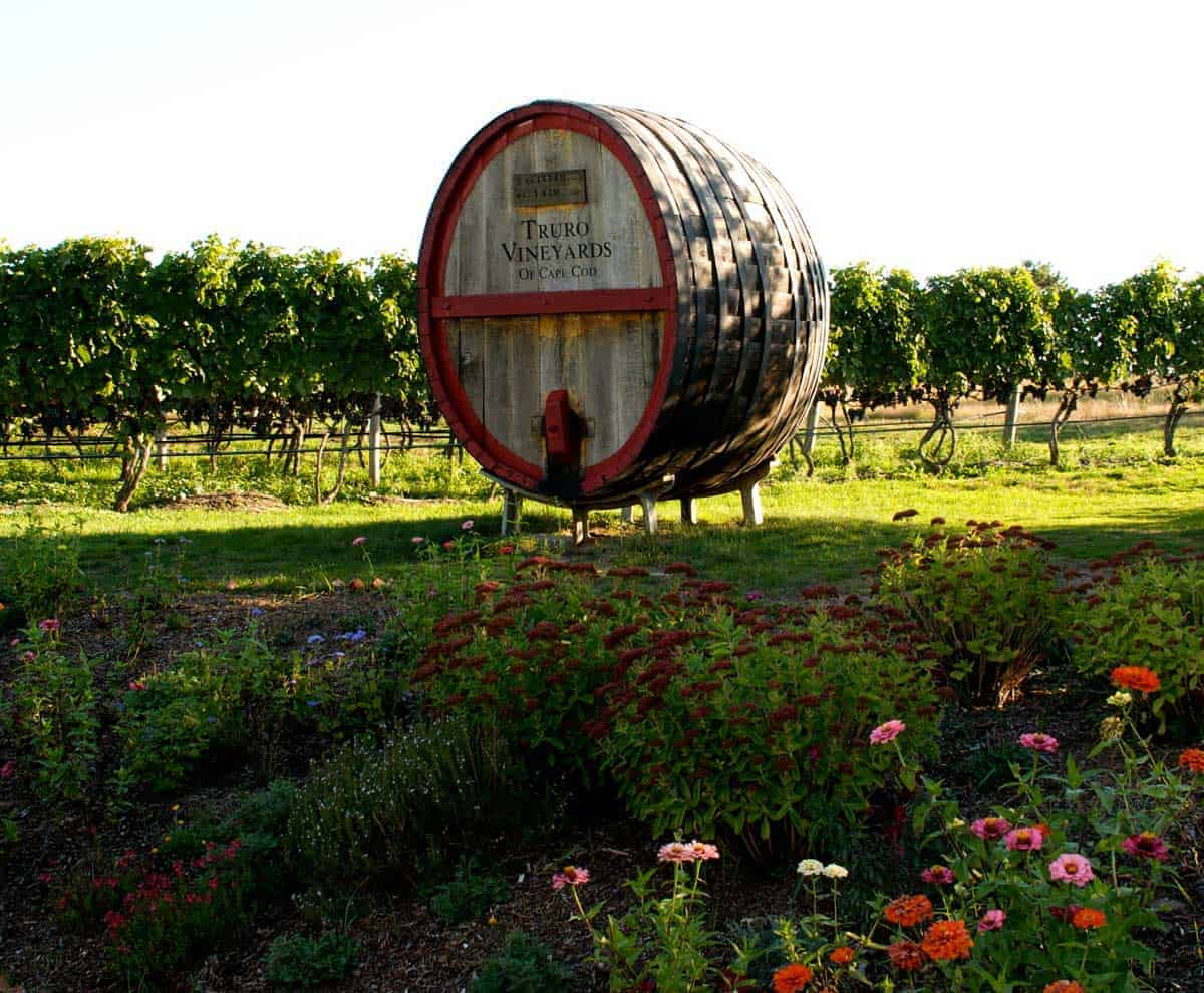 A large wine barrel next to the vineyards at Truro Vineyards in Cape Cod.