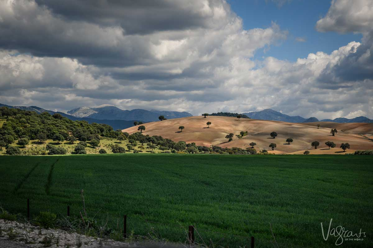 Green meadows set agains contrsating brown hills in Andalucia in Spain.