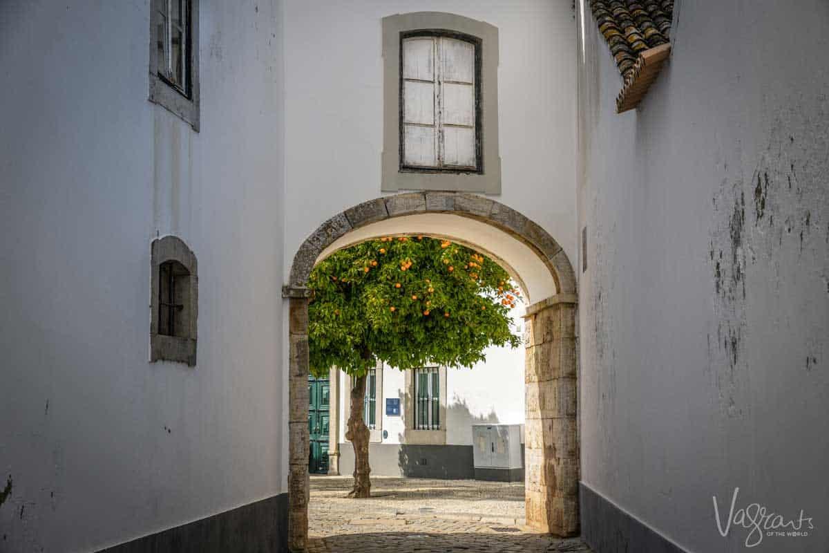 An orange tree in the old town of Faro in the Algarve Portugal.