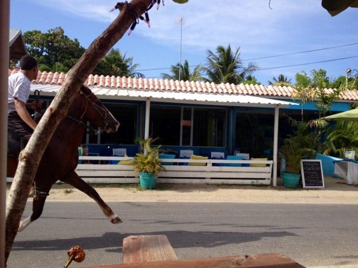 La Nasa Bar, Vieques