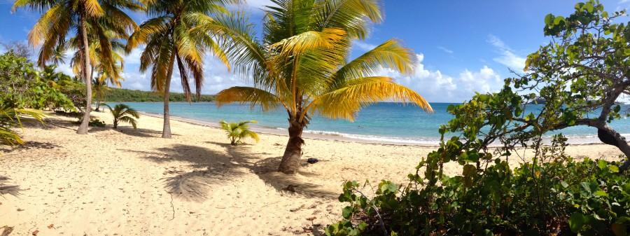 Sun Bay Vieques Island