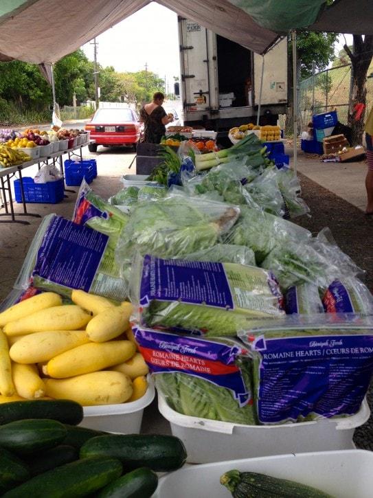 Vieques Farmers Market