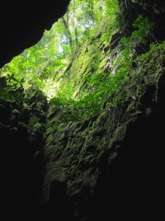 Deer Cave- Gunung Mulu National Park, Borneo
