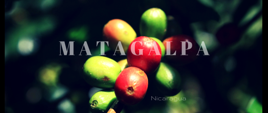 Matagalpa, Nicaragua's Coffee Country.