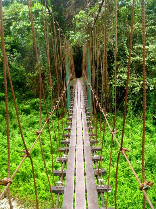 The Head Hunters Trail-Gunung Mulu National Park, Borneo