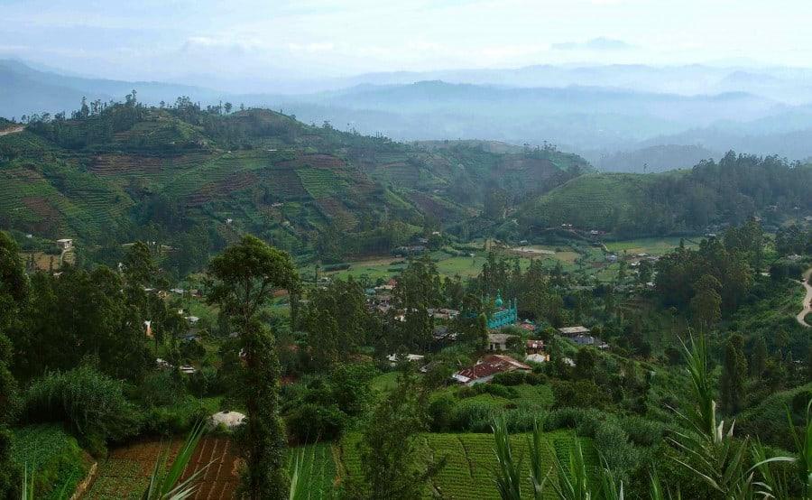 The Hill Country Sri Lanka