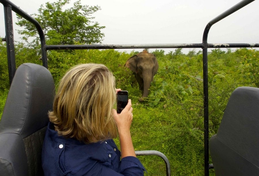Uda Walawe national Park Sri Lanka